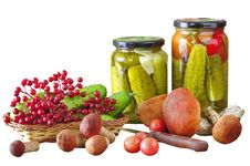 Free Vegetables Stock Images - 21195054