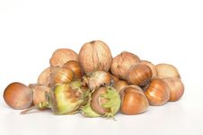 Hazelnuts And Walnuts Stock Image