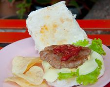 Free Cheese Burger Stock Photography - 21196362