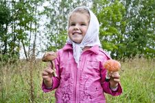 Free The Child Collects Mushrooms Stock Photography - 21196872