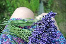 Bunch Of Lavender Flower On The Skirt Royalty Free Stock Image