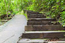 Free Walk Way In Namtokphlio National Park Royalty Free Stock Image - 21198986