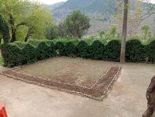 Naturally Garden In KASHMIT VERY AMAZING VIEWS Stock Photos