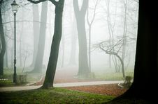 Free Park In The Fog Royalty Free Stock Photography - 2121717