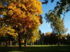 Free City Park In Autumn Stock Images - 2121924