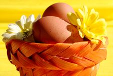Eggs And Flowers In Basket Royalty Free Stock Photography