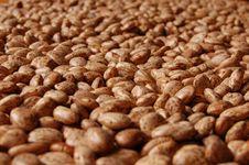 Free Bean Heap Stock Image - 2122321