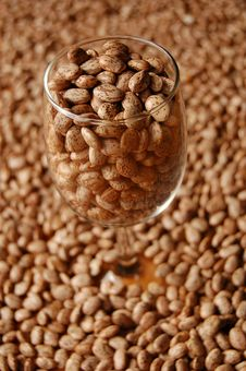 Free Beans In Glass Stock Images - 2122404