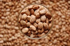 Free Beans In Glass In Focus Stock Photography - 2122632