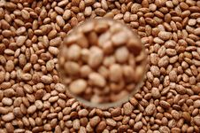 Beans In Glass Out Of Focus Royalty Free Stock Photos