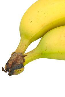 Free Bananas Stock Images - 2123164