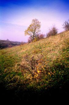 Free Autumn In Steppe Stock Photos - 2124463