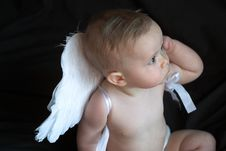 Free Angel Baby Royalty Free Stock Photo - 2128725
