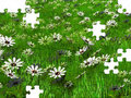 Free Puzzle Of Meadows Stock Photos - 21201613