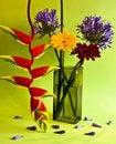 Free Flower Arrangement Stock Images - 21207844