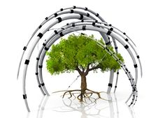 Free Tree And Arches Stock Photo - 21201240