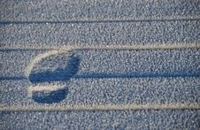 Free Frosty Footprint Stock Photo - 21202840