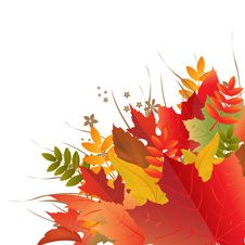 Free Autumn Background Stock Images - 21203614