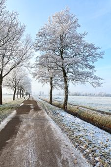Free Small Road In A White Winter Landscape Royalty Free Stock Images - 21204599