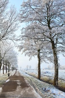 Free Small Road In A White Winter Landscape Royalty Free Stock Photos - 21204648