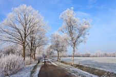Free Small Road In A White Winter Landscape Royalty Free Stock Photos - 21204748