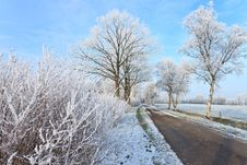 Free Small Road In A White Winter Landscape Stock Image - 21204791