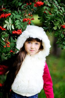 Free Cute Little Girl In Fur Coat Under Rowan Tree Stock Image - 21206201