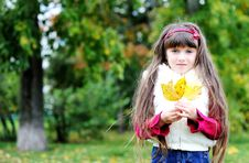 Portrait Of Cute Little Girl In Autumn Forest Stock Photos