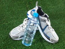 Free Runners Royalty Free Stock Photo - 21208205
