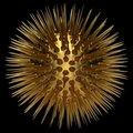 Free Illustration Of VIRUS Royalty Free Stock Photos - 21215948