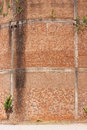 Free Vine On Old Brick Wall Royalty Free Stock Image - 21218616