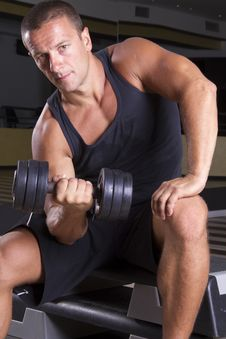Weightlifting Stock Photography