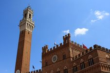 Free Torre Del Mangia And Palazzo Pubblico, Siena Royalty Free Stock Photos - 21213508