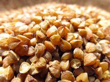 Buckwheat Seeds Royalty Free Stock Photos