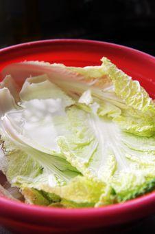 Free Cabbage Stock Photo - 21217000