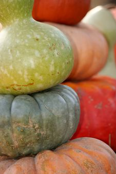 Free Pumpkins Royalty Free Stock Images - 21218309