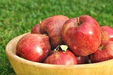 Bowl Full Of Red Apples Stock Image