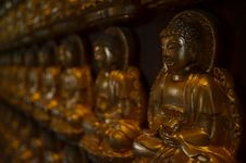 Free Golden Buddha Statue Royalty Free Stock Photography - 21218997