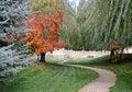 Free Manicured Winding Park Path Stock Photo - 21221780