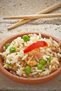 Free Canton Chinese Rice Royalty Free Stock Image - 21224216