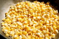 Free Corn Grains Royalty Free Stock Image - 21226556