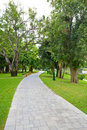 Free Path Through Stock Photo - 21227580