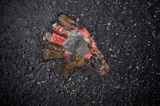 Free Moulten Asphalt Royalty Free Stock Photos - 21220618