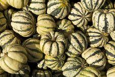 Free Pumpkins Royalty Free Stock Image - 21221176