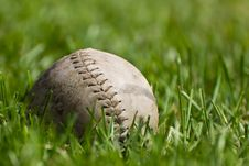 Free Baseball Royalty Free Stock Image - 21221236