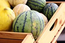 Free Box Of Melons Royalty Free Stock Photography - 21224837