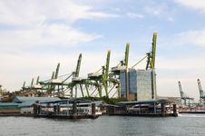 Container Cranes Stock Photos