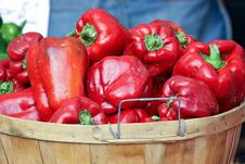 Free Basket Of Red Peppers Royalty Free Stock Images - 21224949