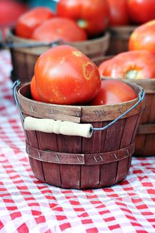Free Basket Of Tomatoes Royalty Free Stock Photos - 21225288