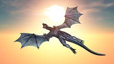 Free Dragon Stock Image - 21226321